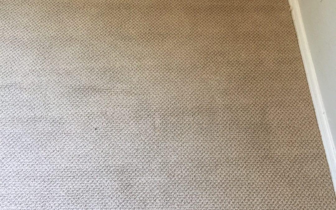Carpet Stretching in Surprise, AZ