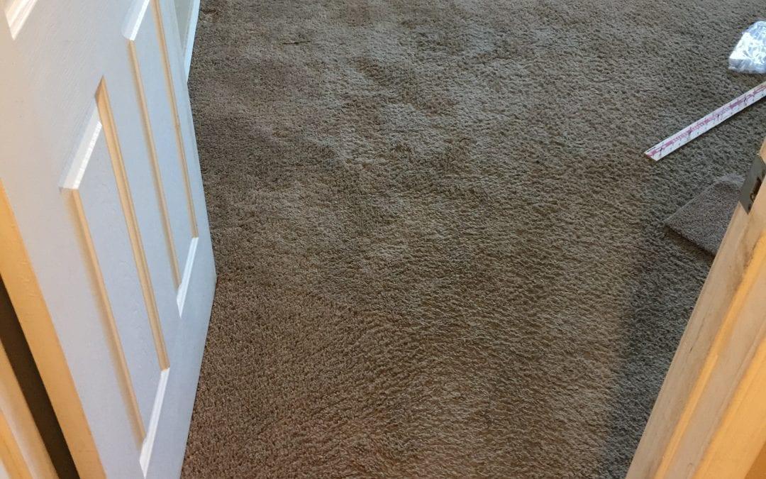Scottsdale, AZ: Carpet Repair & Cleaning