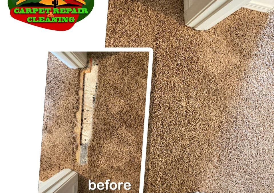 Peoria, AZ: Carpet Repair